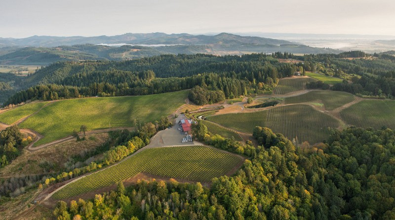 Elk Cove's Estate Vineyards, Gaston, Willamette Valley, Oregon