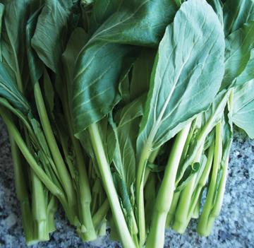 Broccoli_subhead