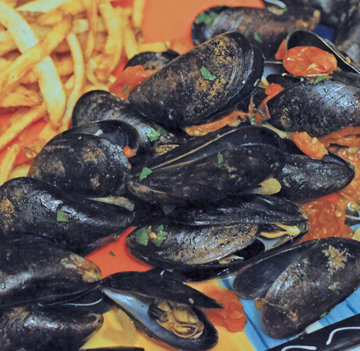 subMussels1