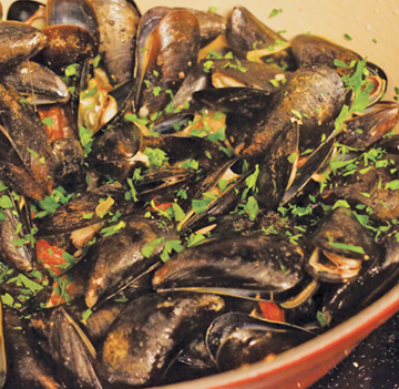 subMussels4